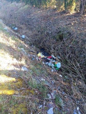 Aldrich trash #1